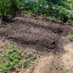 【山林生活】畑の中のシャワールーム改築と農地開拓