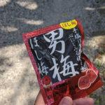 東海道五十三次を京都まで向かう際に必要なものとは