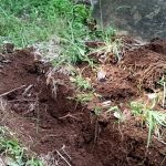 自分のウンコを肥料に変える画期的な方法