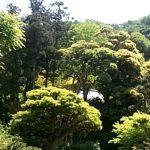 理想とする山林の新たな探し方