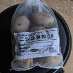 【誰でもできるはず】秋植えジャガイモの育て方