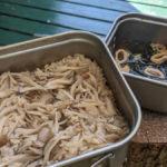 【山林ご飯】クッカーで作るマイタケ炊き込みご飯レシピ