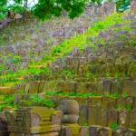 【墓石の墓場】よみうりランドのそばにある「ありがた山」【存続危機】