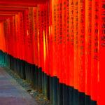【京都観光】伏見稲荷みたり、鯖寿司食べたり