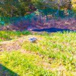 【山林経過報告】床塗装、一酸化炭素警報機作動テスト、畑を見る